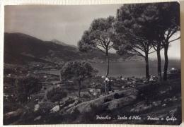 Procchio Isola D'Elba Pineta E Golfo Viaggiata F.g. - Livorno