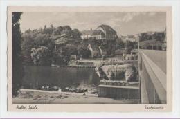 Halle-Saalepartie - Halle (Saale)