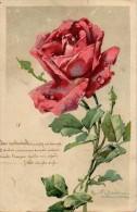 Catharina KLEIN Branche De Rosier Et Rose (carte Gauffrée) - Klein, Catharina