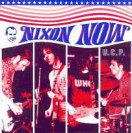 NIXON NOW - U.C.P. - 45t - FANBOY RECORDS - PUNK ROCK - Punk