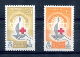Nouvelles Hébrides  Yvert 199 & 200 - Neuf *** -  T 21 - Neufs
