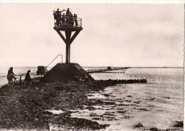 85-----ILE DE NOIRMOUTIER--refuge Sur Le Passage Du Gois--voir 2 Scans - Noirmoutier