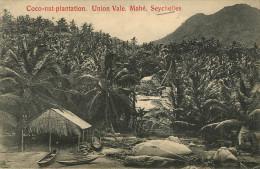 Seychelles : Mahé - Coco Nut Plantation - Seychelles