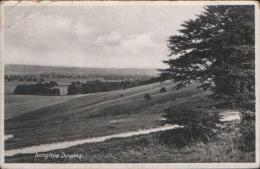 IVINGHOE DOWNS NR IVINGHOE BEACON Nr EDLESBOROUGH LEIGHTON BUZZARD - Buckinghamshire