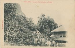 Bora Bora Bosquets D Arbres Fruitiers A Vaitape Undivided Back Edit E. Hanni - Tahiti