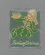 PINS PIN'S PLANTE FLEUR  NATURE VERDURE FRUIT BOLDOFLORINE PIN UP - Pin's