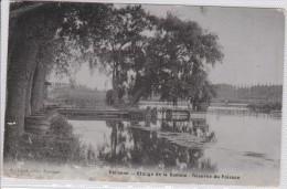 PERONNE - étangs De La Somme - Réserve Du Poisson - Peronne