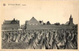 BELGIQUE - FLANDRE OCCIDENTALE - LEDEGEM - SINT ELOOIS WINKEL - Klooster. - Waregem