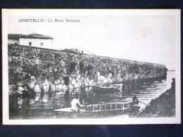 TOSCANA -GROSSETO -ORBETELLO -F.P. LOTTO N° 447 - Grosseto