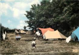 Nievre -gd Format Div- Ref M967-stade Nautique De Decize -une Partie Du Terrain Municipal Et Camping  -carte Bon Etat  - - Decize