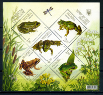 Ukraine 2011 Ucrania / Frogs Fauna MNH Ranas Frosch / C8420   2 - Ranas