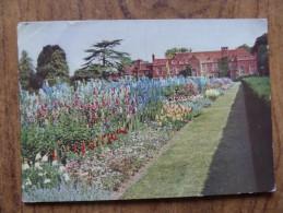 42727 PC: FLOWERS: Garden Studies. Card From DE RESZKE Cigarette And Other Godfrey Phillips Associated Brands. - Unclassified