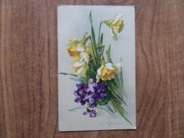42735 PC: FLOWERS: Dafodills. - Non Classés