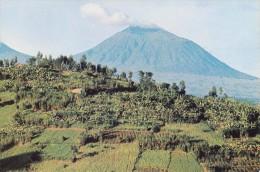 Volcan Muhabura (Rwanda, à La Frontière Avec Uganda) - Rwanda