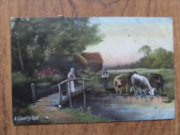 42767 POSTCARD: A Country Idyll. - Folklore