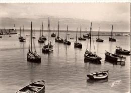 85----NOIRMOUTIER---le Port De L'herbaudière---voir 2 Scans - Ile De Noirmoutier