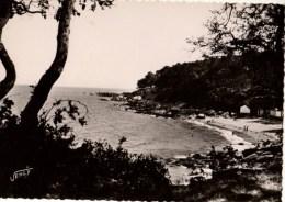 85----NOIRMOUTIER--l'anse Rouge----voir 2 Scans - Ile De Noirmoutier