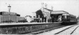 Abbotsbury Railway Station Early 1900s - Railway