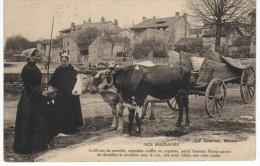 Beauregard Nos Bressanes - Autres Communes