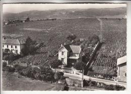 FLEURIE 69 - LesVignes Du CLOS DES ROCHAUX - CPSM Dentelée Noir Blanc GF 1960 - Rhône - Autres Communes