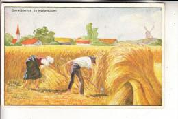 LANDWIRTSCHAFT - Getreideernte In Westpreussen, Werbe-Karte Fa. Gustav Weese, Honigkuchenfabrik Thorn - Cultures