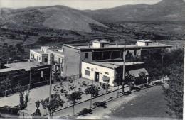 LAZIO-FROSINONE-ALATRI VIALE DUCA D'AOSTA VEDUTA DEL BRIO BAR ANNI 50 - Altre Città