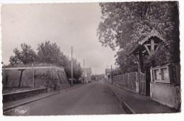 CHAMPDENIERS. - Route De Bressuire. Cpsm 9x14 - Champdeniers Saint Denis
