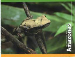 Lote PEP330, Colombia, Postal, Postcard, Amazonas, Amazon, Rana, Frog - Colombia