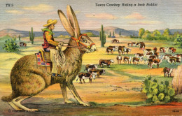 COWBOY(VACHE_LAPIN) - Native Americans
