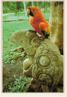 COPAN:  ZONA   ARCHEOLOGICA   MAYA        (NUOVA  CON DESCRIZIONE DEL LUOGO SUL RETRO) - Honduras