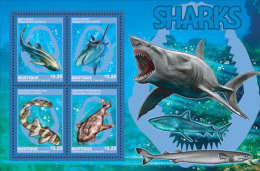 Mustique Grenadines Of  St.Vincent -2014-Marine Life-Sharks - St.Vincent E Grenadine