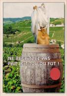 51 -  Carte à Trou, Ne Regardez Pas Par Le Trou Du Fut ! - Unclassified