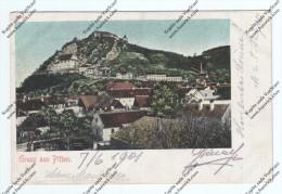 Gruss Aus Pitten 1901    2 SCANS - Pitten
