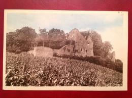 39 Jura ARLAY Ruines Du Chateau Féodal Des Princes De Chalon (près BLETTERANS) - Autres Communes