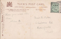 POSTAL HISTORY -1905 SQUARED CIRCLE CANCELLATION - PETERSFIELD - Poststempel