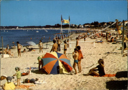 SPORTS - VOLLEY - LE VIEIL - NOIRMOUTIER - - Volleyball