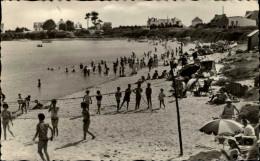 SPORTS - VOLLEY - DAMGAN - Morbihan - - Volleyball