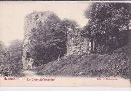 BEAUMONT : La Tour Salamandre - Beaumont