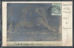 - CPA 90 - Beaucourt, Photo Du Lion De Belfort - Beaucourt