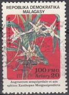 Madagascar, 1985 - 100fr Angraecum Sesquipedale - Nr.739 Usato° - Madagascar (1960-...)