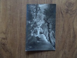 43227 PHOTOGRAPH: Unknown Location. - Postcards