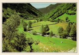 VALLS  D' ANDORRA    PAESAGGIO  DEL  NORD     (NUOVA Con Descrizione Del Luogo Sul Retro) - Andorra