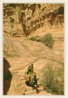 PETRA (EL DEIR) SCALA INTAGLIATA NELLA ROCCIA        (NUOVA Con Descrizione Del Luogo Sul Retro) - Giordania