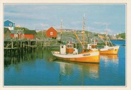 NORVEGIA  ISOLE LOFOTEN:   VEDUTA      (NUOVA  Con Descrizione Del Luogo Sul Retro) - Norvegia