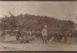 Guerre 1914-18 - Les Cheveaux De La Cavalerie Française Au Repos En Attente Du Départ - War, Military
