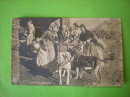 Laitières Belges, 1913, Belle Oblitération   (N) - Autres