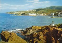 Banyuls-sur-mer - Vue Générale Et Le Nouveau Port - FRANCO DE PORT - Banyuls Sur Mer