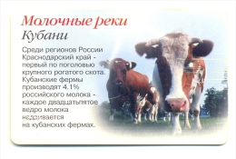 Russia Southern Telecommunications Company 65 Years Krasnodar Region Cows - Milk - Russia