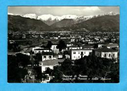 MASSA  -    ** VEDUTA DI MASSA E DELLE APUANE **   -   Edizione :  L. MICHELETTI De Massa. N°49289 - Massa