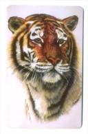 Russia Kubtelecom Krasnodar Cats 3 60 Units Tiger - Russia